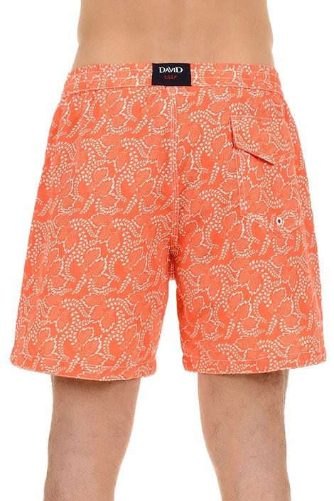 Мужские роскошные пляжные шорты Arancio