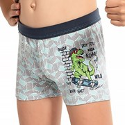 Chlapecké boxerky Dinosaur