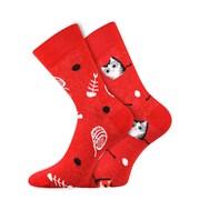Trendy ponožky Kočky - každá ponožka jiná