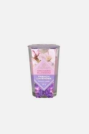 Vonná svíčka Orchard Blossom and French Lavender dvoubarevná