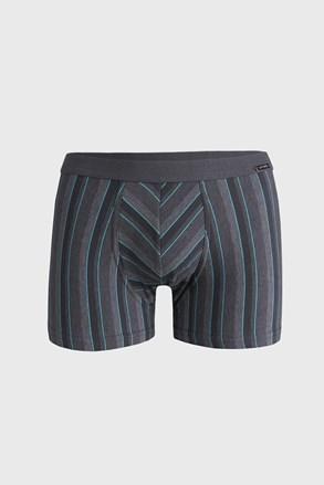 Šedé pruhované boxerky Various Mini