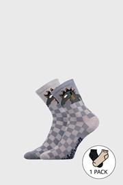 Dětské ponožky Lichožrouti Kudla